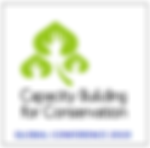 capcity logo 2.png