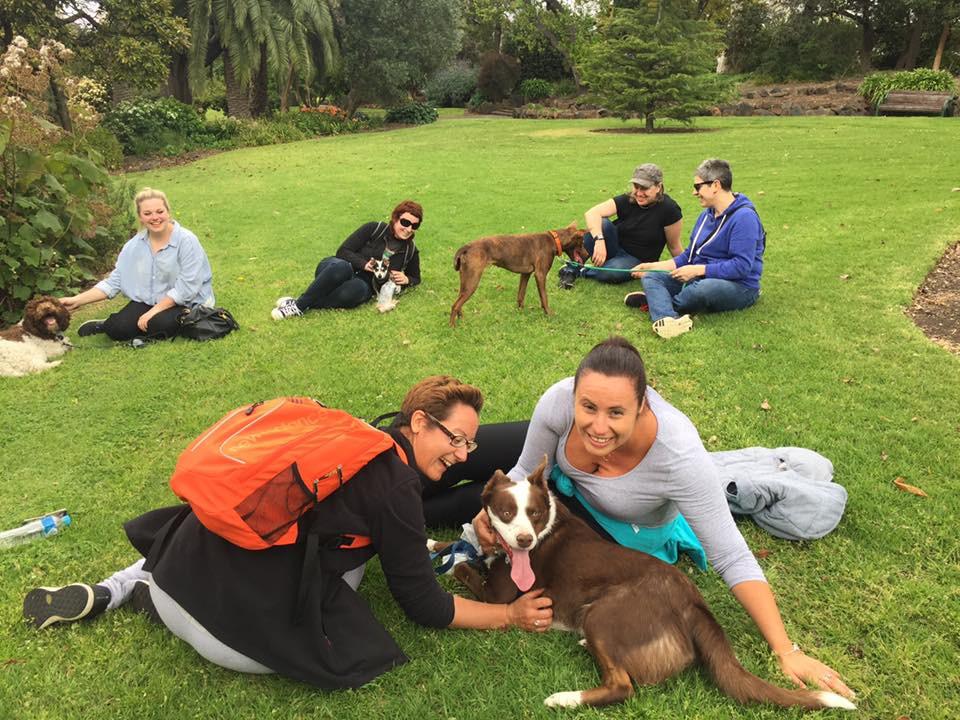 Planet K9 Dog Training