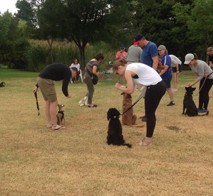 Planet K9 Basic Manners Class40981016116524