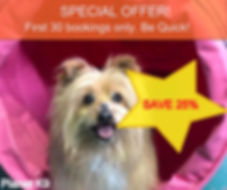 special autumn offer.jpg