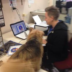 Supervising Trainer Nola