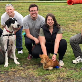 Dog training melbourne Planet K9