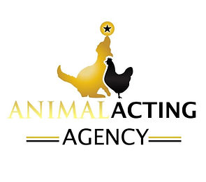 Animal Casting Agent