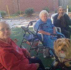 He loved to sit in everyone's walker