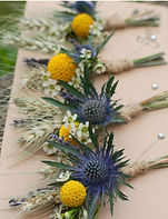buttonhole selection.jpg