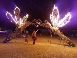 Arcus Hymenoptera, Burning Man