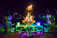 The Queen of the Night, Sonic Bloom