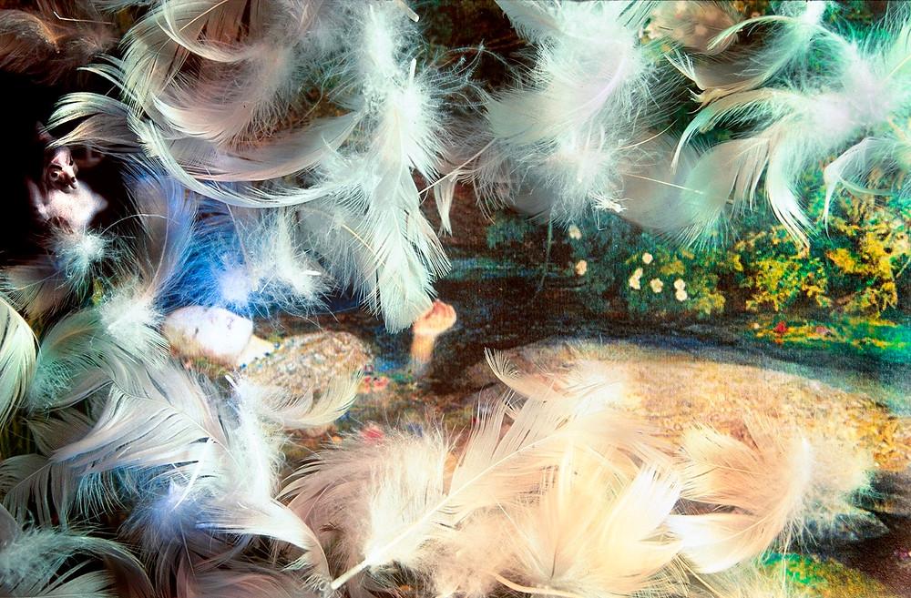 sorcière-plumes.jpg