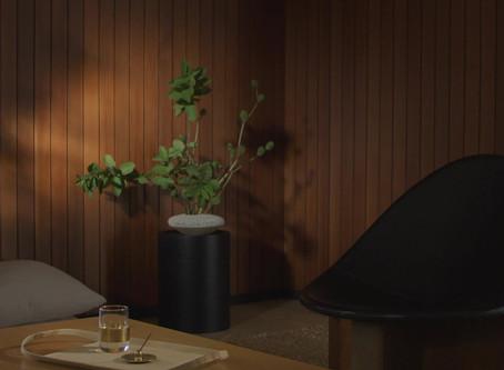 Hosting a Japanese-Inspired Dinner Party (KonMari)