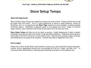 Giant Tiger - Store Setup Temps