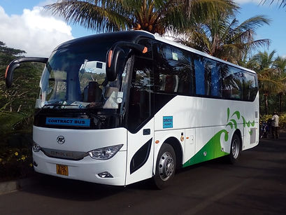 Airport and Cruise port Transfer