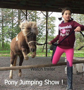 pony jumping, hattie nichols, hv Horseplay, pony safari