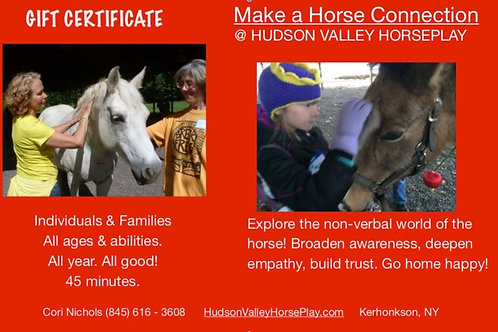 GIFT CARD: Make A Horse Connection