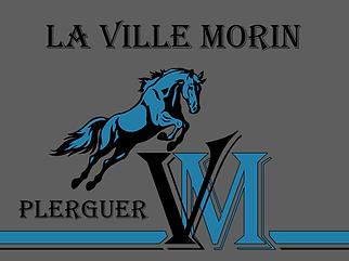 Logo LVM 5F.png