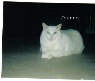 Jeanno