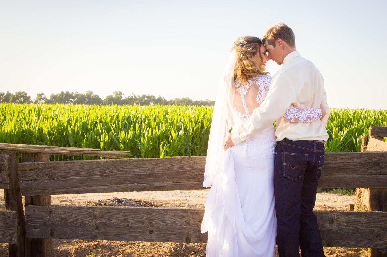 Wedding Film School.Fullscreen Page Love Is Sweet Wedding Photography Film Productions
