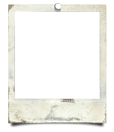 polaroid6.png
