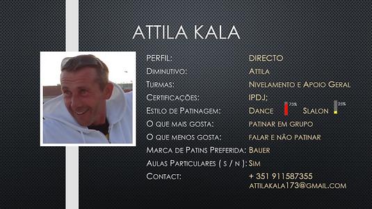Profile AK.PNG