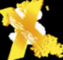 Iceshow X Symbol.png