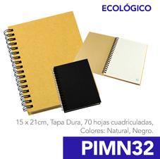 PIMN32.png