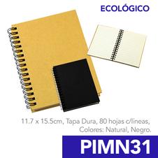 PIMN31.png
