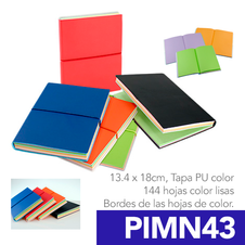 PIMN43.png