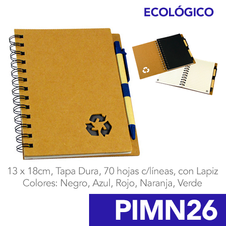 PIMN26.png