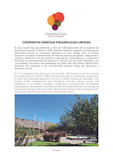 19.0A Capel Corporativa.jpg