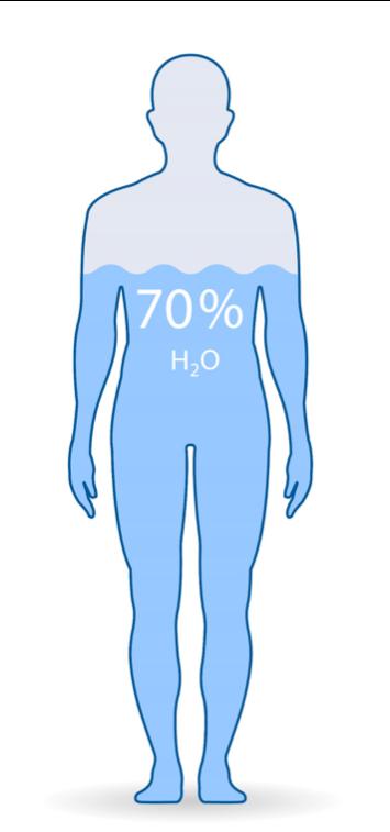 L'hydratation - Le corps
