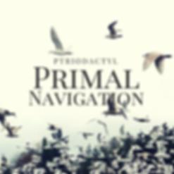 Primary Navigation Album 1 (25).png