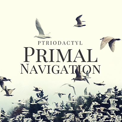 Primary Navigation Album 1 (25).png