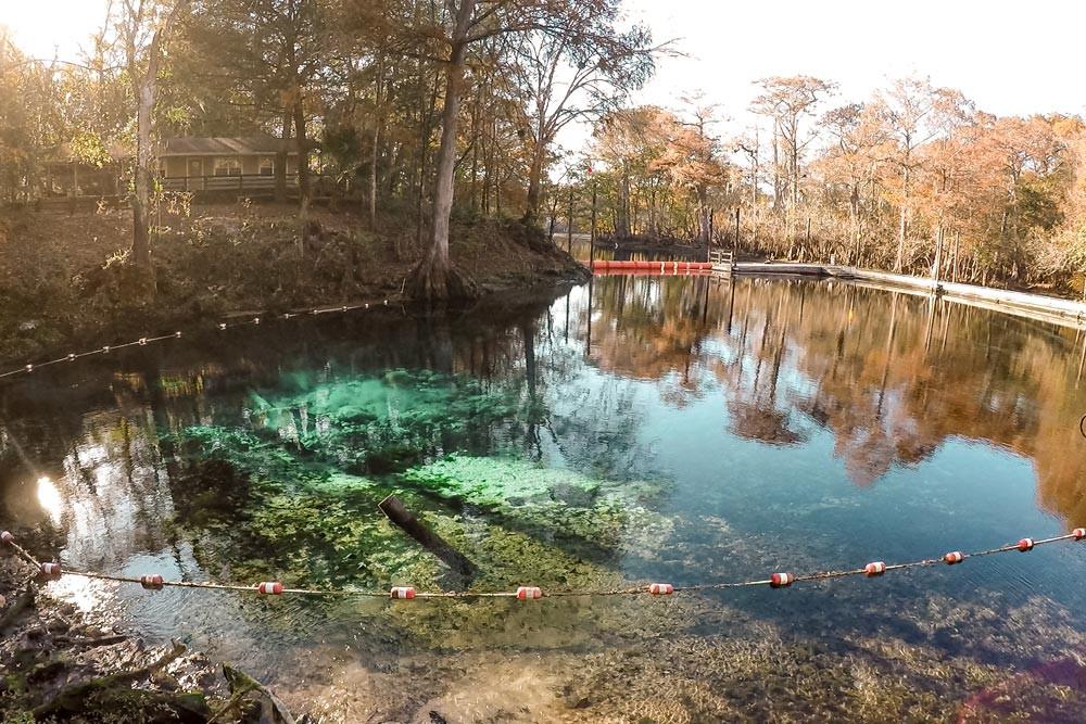Source d'eau claire en Floride à l'automne. Fanning Springs, Floride