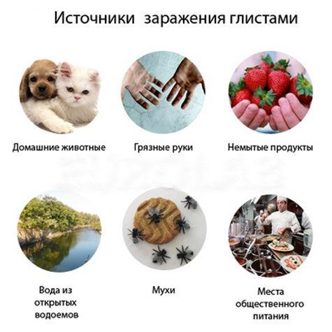glisti_istochniki.jpg