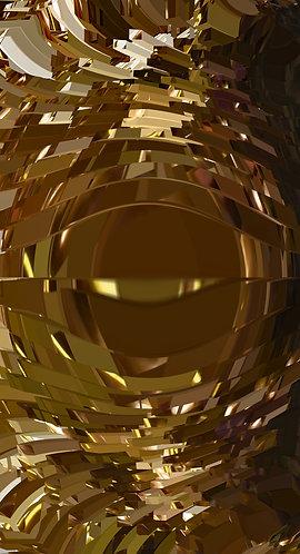 Goldeneye - Acrylic Print