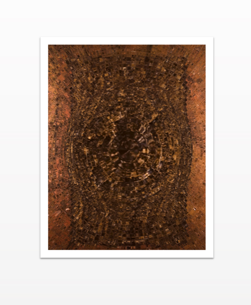 Anaeous - Metal Print