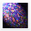 Thumbnail: Comet of Colour - Metal Print