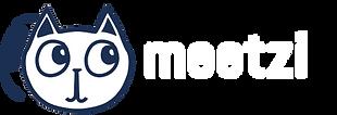 meetzide_logo.png