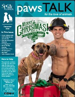 SPCA Florida Newsletter December 2020