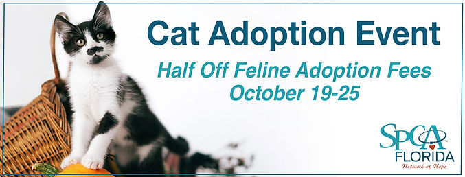 Cat Adoption Event Banner.jpg
