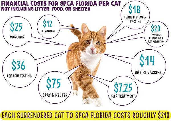 Costs per cat_72dpi.jpg