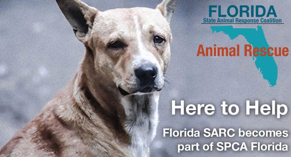 Florida SARC becomes a part of SPCA Florida!