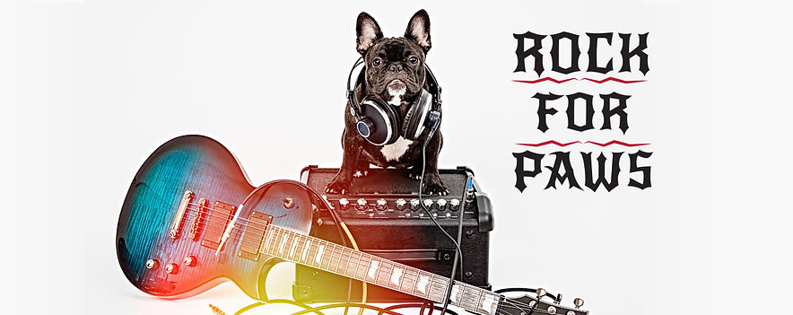 Rock for Paws 2020.jpg