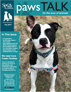 SPCA Florida Newsletter May 2019