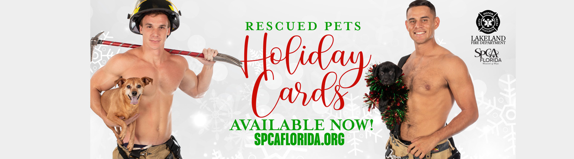 2020 Rescued Pets Holiday Cards