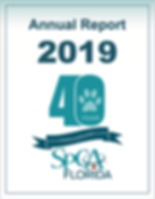 Cover Annual Report 2019.png