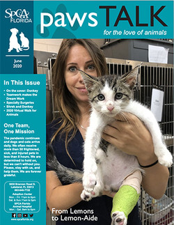 SPCA Florida Newsletter June 2020