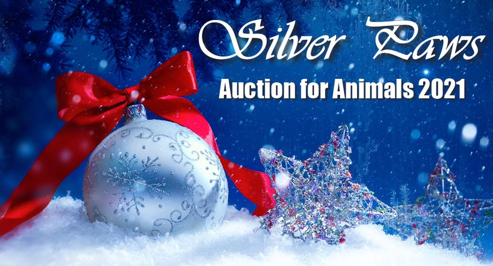 Silverpaws - SPCA Florida's 2021 Auction for Animals