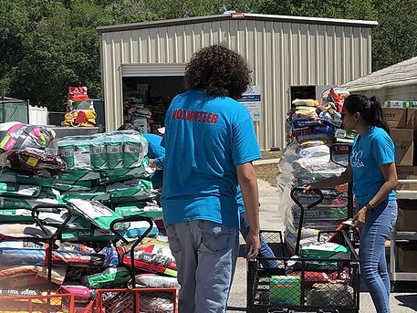 Foodbank 2 for website.jpg