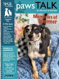 SPCA Florida Newsletter September 2021