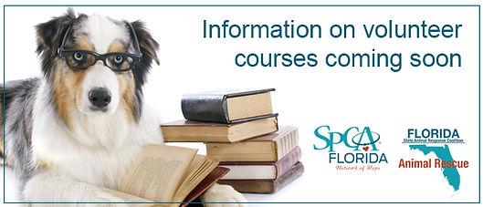 volunteer courses.jpg